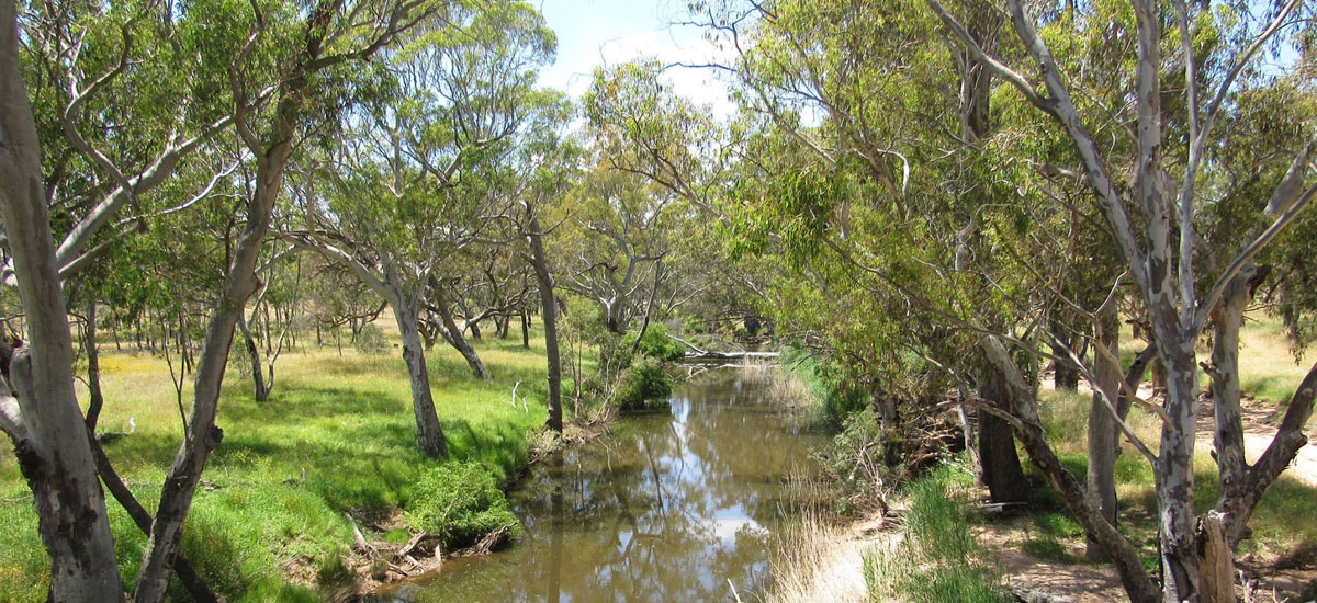 The Little River Landcare Group Inc. - Membership
