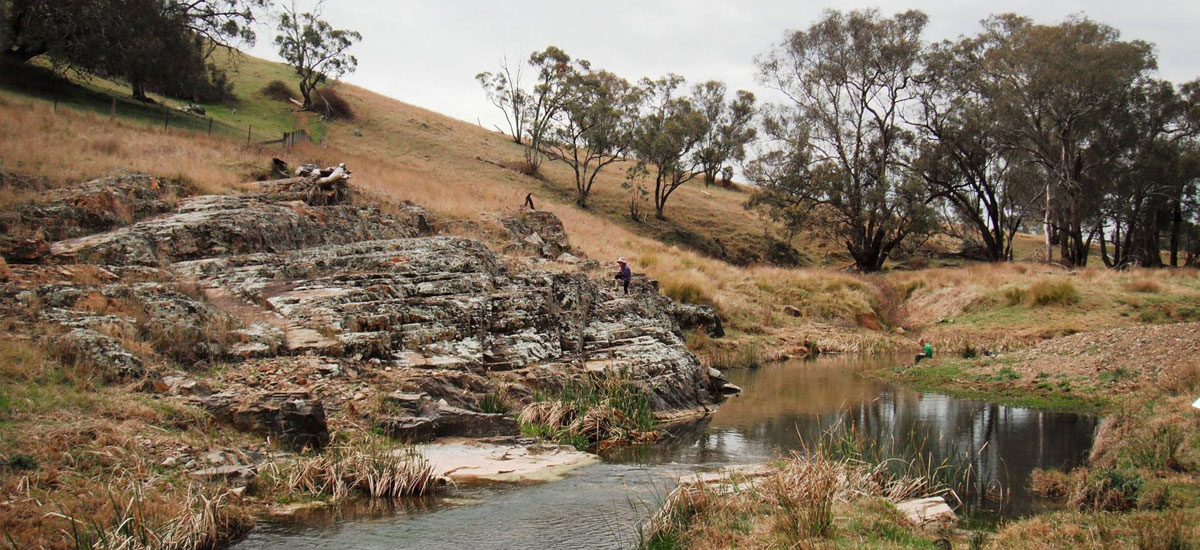 The Little River Landcare Group Inc. - Upcoming Events